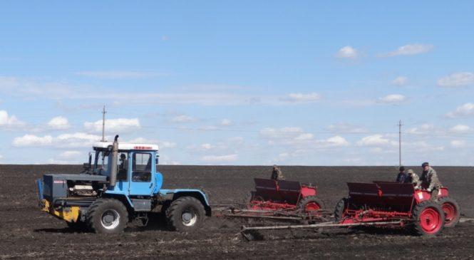 О севе яровых зерновых и зернобобовых культур