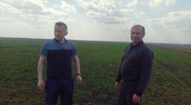 Глава администрации района ознакомился с ходом весенних полевых работ в СХПК «Слава» и колхозе «Искра»