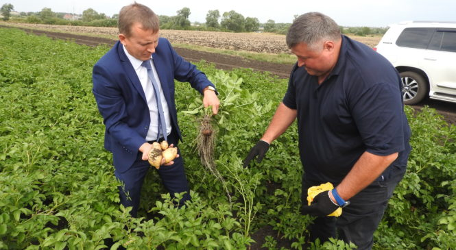 Глава администрации Комсомольского района А.Н. Осипов посетил КФХ Хайртдинова Р.А.