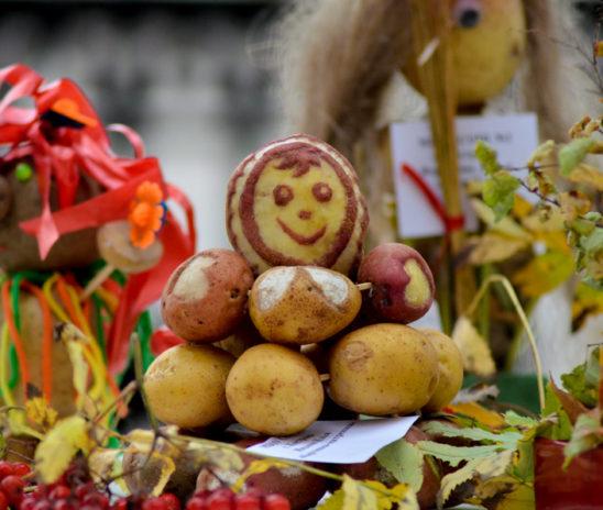 Приглашаем на праздник картошки «Ах, улмаçăм-çĕрулми!»