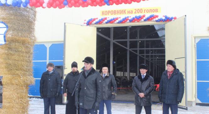 В  СХПК «Рассвет» открыли молочно-товарную ферму