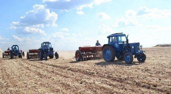 Посевная площадь под урожай 2019 года в Чувашии составит 540 тыс. га