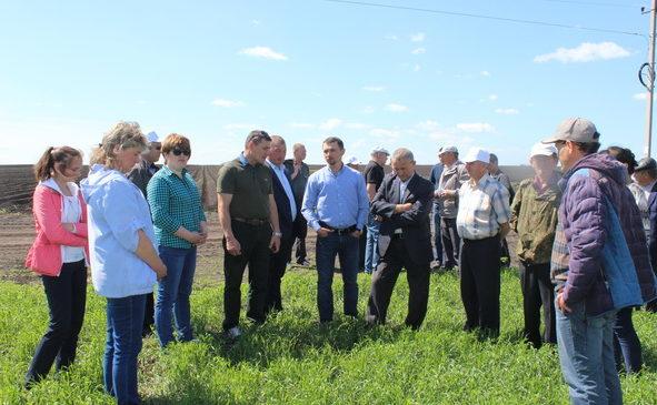 Смотр посевов в Комсомольском районе