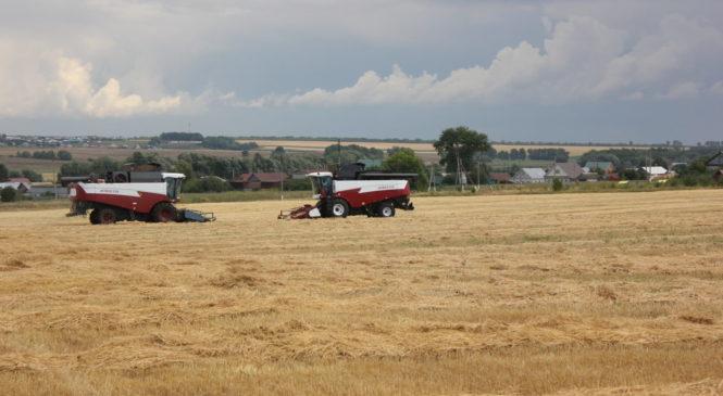 В сельхозпредприятиях идет уборка урожая