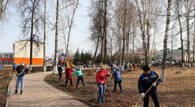 В Комсомольском районе дан старт экологическим субботникам